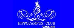hippocampusclub